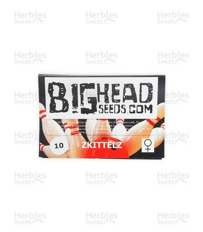 Zkittlez (Big Head Seeds)