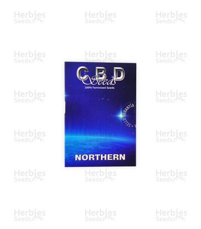 Northern (CBD Seeds)