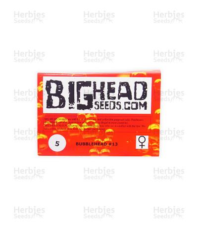 Bubblehead 13 (Big Head Seeds)