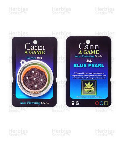 Blue Pearl Auto
