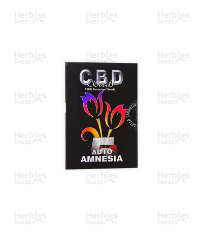 Auto Amnesia (CBD Seeds)