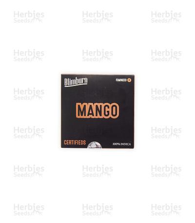 Mango (BlimBurn Seeds)
