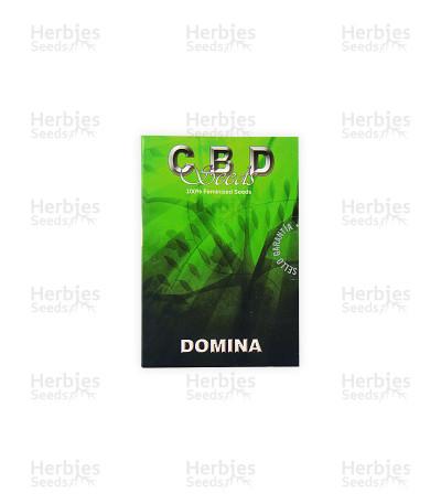 Domina (CBD Seeds)