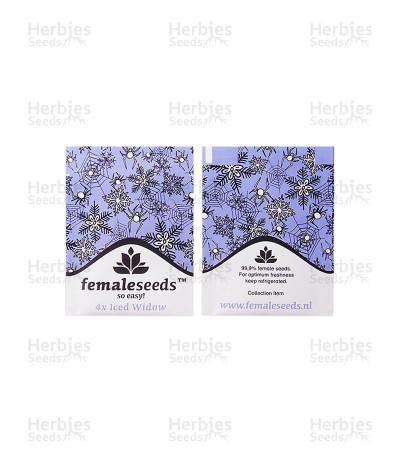 ICED Widow (Female Seeds)