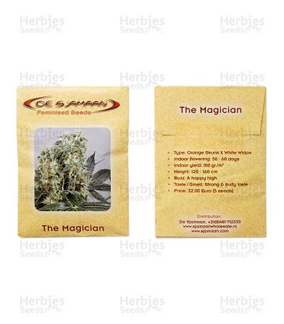 The Magician feminized seeds
