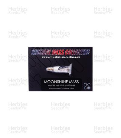 Moonshine Mass feminized seeds